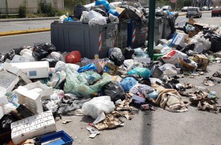 Corte di Cassazione: emergenza rifiuti, confermato il taglio della Tarsu per mancato servizio di raccolta