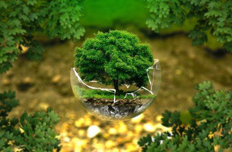 """Realizzare il """"Green New Deal"""" dell'Unione europea. In campo il programma """"Life 2021-2027"""" per 5.4 miliardi di euro"""