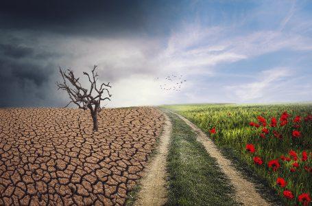 Legge sul clima, via libera definitivo del Parlamento Ue: zero emissioni entro il 2050