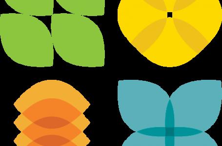 Piano RiGenerazione Scuola, al via le candidature per entrare nella Green Community. Domande fino al 15 ottobre